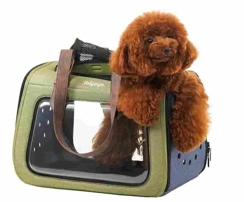 Köpek Taşıma Çantası, Tekerlekli Köpek Çantaları ve Fiyatları | Petza